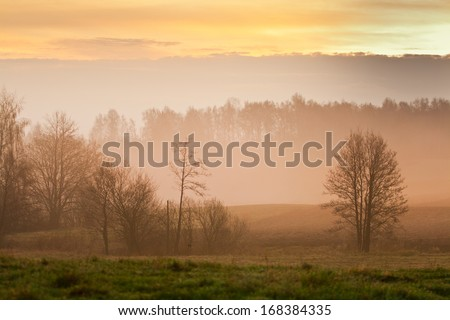 Sunrise at the spring fields - stock photo