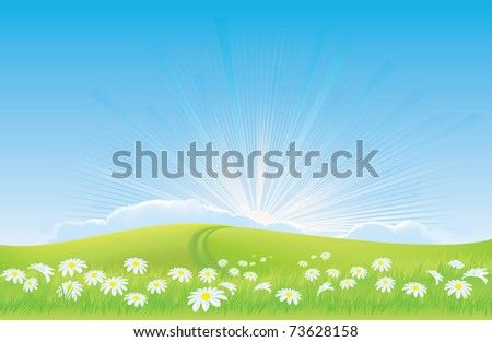 Sunrise behind field of daisies - road to happiness Sunny spring landscape - meadow, green grass,  chamomile, daisy, road, blue sky, sun - stock photo