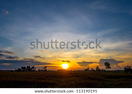Sunrise dawn paddy fields.Fiery orange sunset sky. Beautiful sky.sunset in Thailand