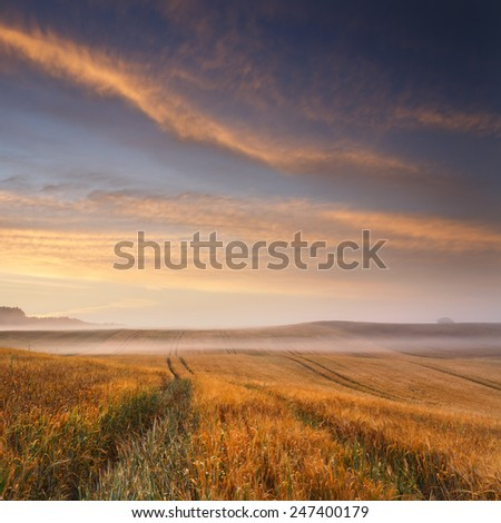 Sunrise field in north Poland/ Sunrise field - stock photo