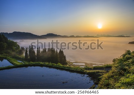 Sunrise from sea of clouds and rice terraces, Hoshitouge, Niigata, Japan - stock photo