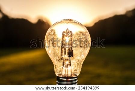 Sunrise in a bulb - stock photo