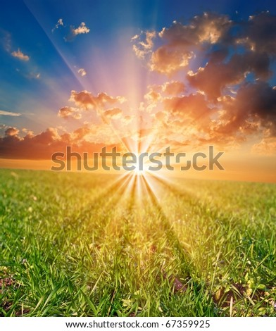 sunrise in a green rural field - stock photo
