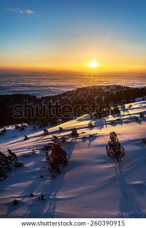 Sunrise in a snowy mountain at slope with bushes and clouds inversion in the valley - stock photo