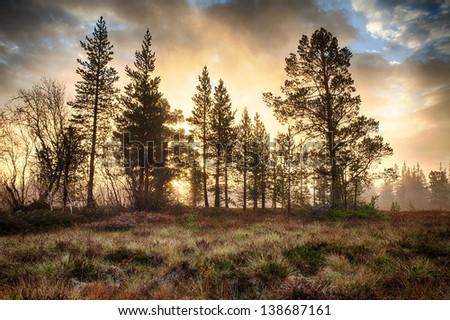 Sunrise in Autumn in Sweden - stock photo