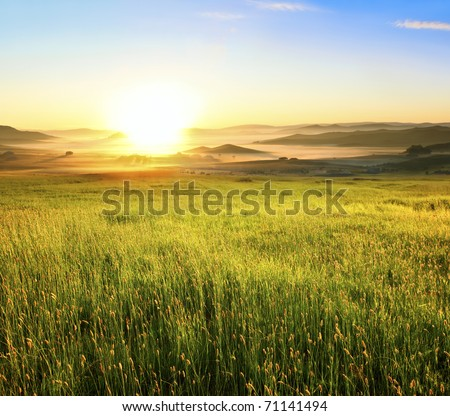 Sunrise in green rural field