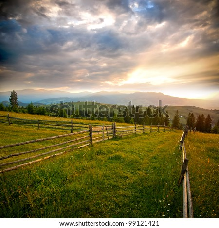 Sunrise in green rural field - stock photo