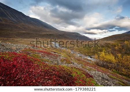 sunrise in Lapland  in sweden in Autumn - stock photo