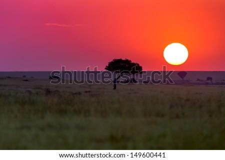 Sunrise in Masai Mara, Kenya - stock photo