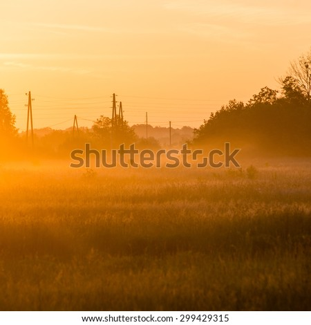 sunrise in misty country meadow with electricity lines in background. square image.