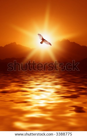 Sunrise in mountains - stock photo