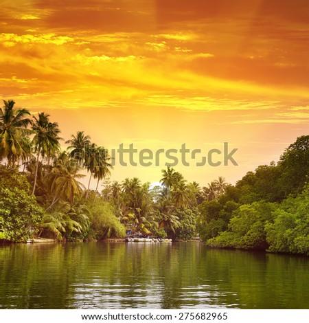 Sunrise in picturesque lagoon - stock photo