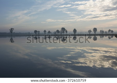 Sunrise in Po Valley with reflections on a rice field - Italy