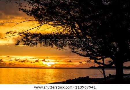 Sunrise in tropical sea with tree and clouds - stock photo