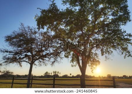 Sunrise in Vero, Florida. - stock photo