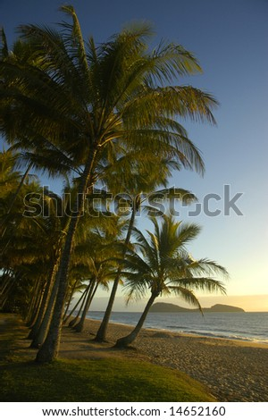 sunrise on a tropical beach