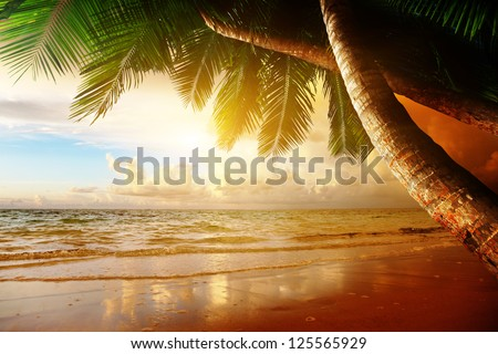 sunrise on Caribbean beach - stock photo