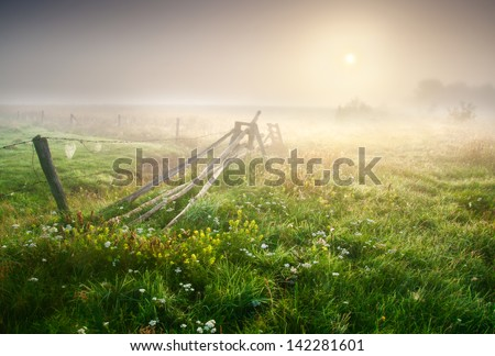sunrise on foggy morning meadow - stock photo
