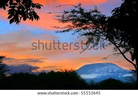 Sunrise on mount Kilimanjaro. Kenya. Amboseli national park. - stock photo