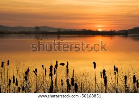 Sunrise on the Lake - stock photo
