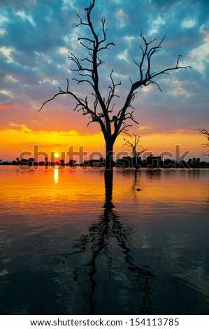 sunrise on the lake manze in tanzania - national park selous game reserve in east africa - stock photo