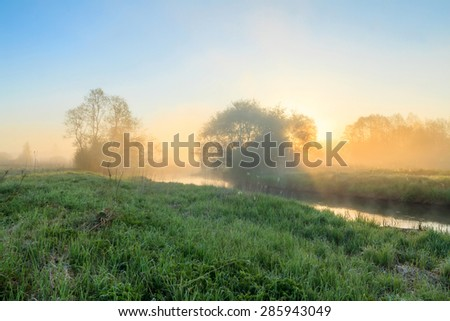 Sunrise on the river with fog. A river whirlpool for the dawn. Trees in fog on the river bank in the morning. The rays of dawn sunlight illuminate the clearing with wildflowers and grass.  - stock photo