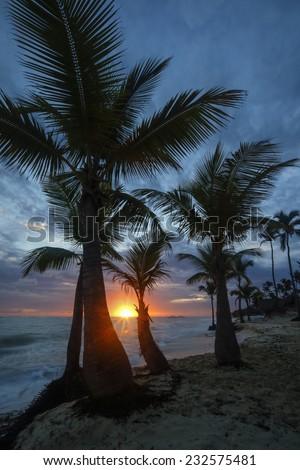 Sunrise  on the tropical Caribbean beach. - stock photo
