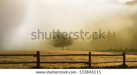 Sunrise over a field with trees and fog - stock photo