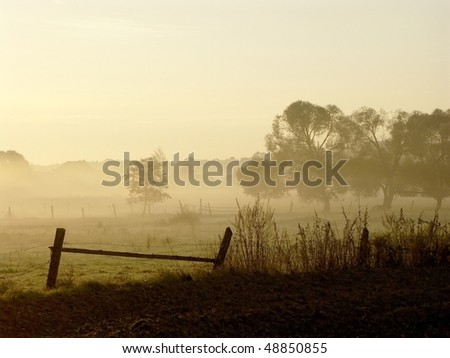 Sunrise over a field with trees and fog floating above the ground. Photo taken in October. - stock photo