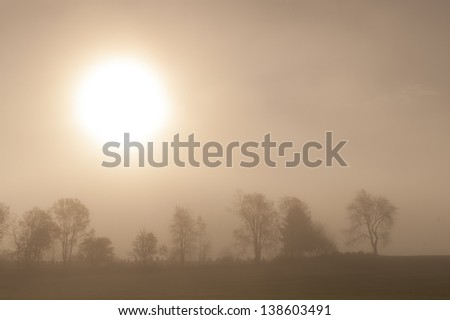 Sunrise over a foggy treeline, Stowe, Vermont, USA - stock photo