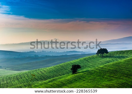 Sunrise over a green valley in Tuscany - stock photo