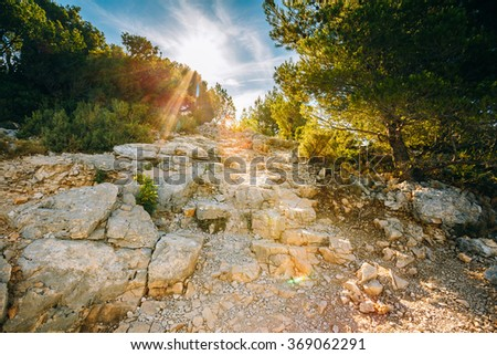 Sunrise over beautiful nature of Calanques on the azure coast of France. High bright cliffs in sunlight under blue sunny sky. Sunset over rocky path, way - stock photo