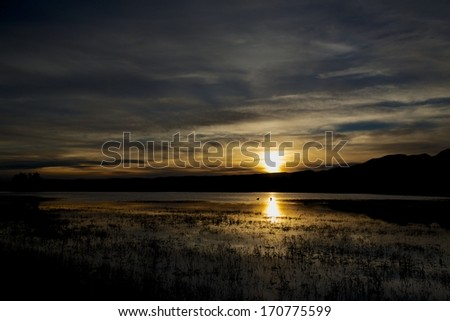 Sunrise over Bosque Del Apache - stock photo