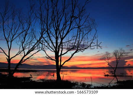Sunrise over dam with dead trees , at Thailand
