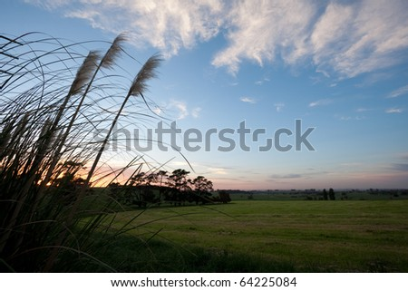 Sunrise over green fields with foreground grass - stock photo