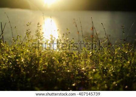 Sunrise over lake - stock photo