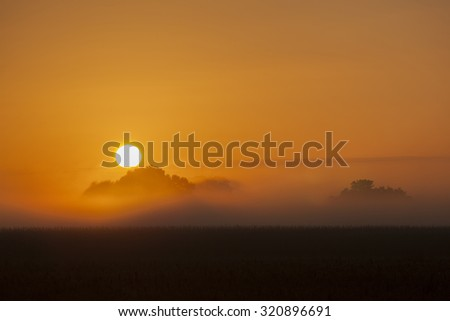 Sunrise over meadow - stock photo