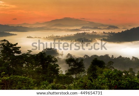 sunrise over over Danum Valley Conservation Area, Sabah - Borneo, Malaysia