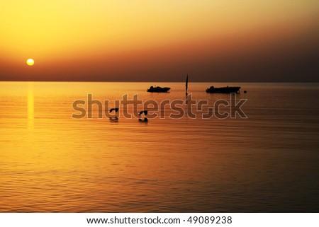 Sunrise over Red Sea - stock photo