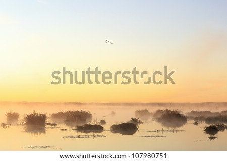 Sunrise over the lake with geese flying - stock photo