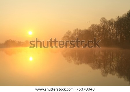 Sunrise over the lake with the reflection of bare trees in the water.