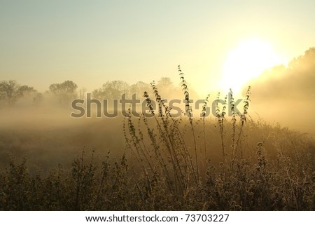 Sunrise over the meadow in a foggy autumn day. - stock photo