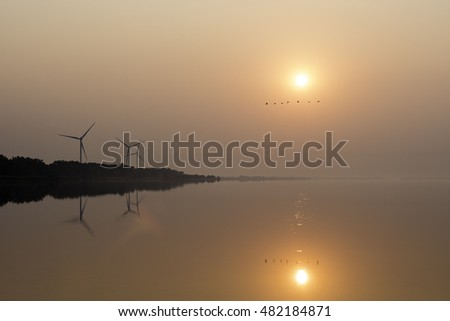 Sunrise over the sea bay. Wind power station on the background. Flying birds silhouettes.