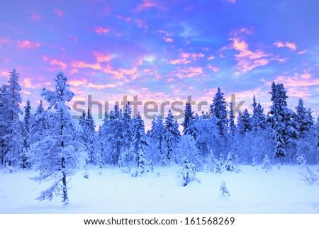 sunrise, swedish lapland - stock photo