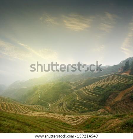Sunrise terraced china guilin - stock photo