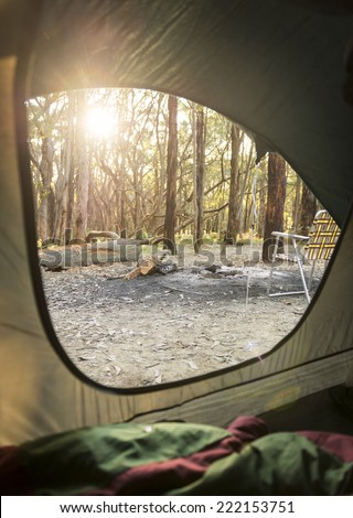 Sunrise through the woods out camping as viewed from inside a tent - stock photo