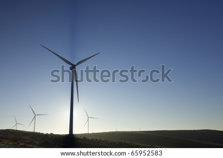 sunrise view of a group of mills for electric energy production