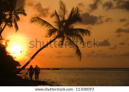 sunrise with palm-tree on a dream-beach
