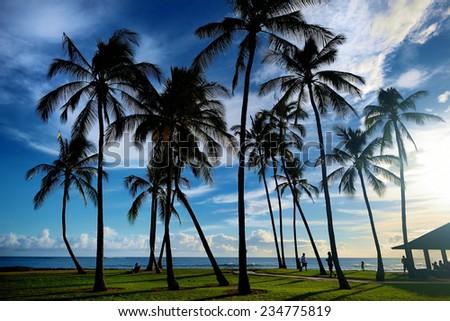 Sunrise with palm trees in Salt Pond Beach Park on Kauai, Hawaii - stock photo