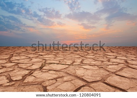 sunset and dry field